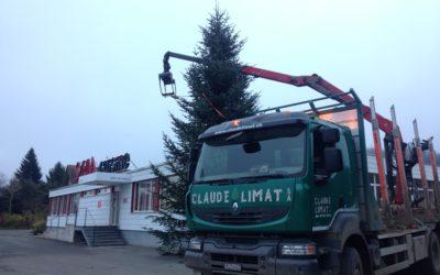 Vente de sapin de Noël de grande hauteur