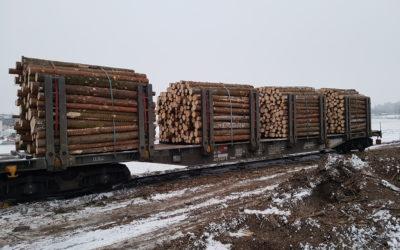 Gestion logistique liée à l'import/export de bois