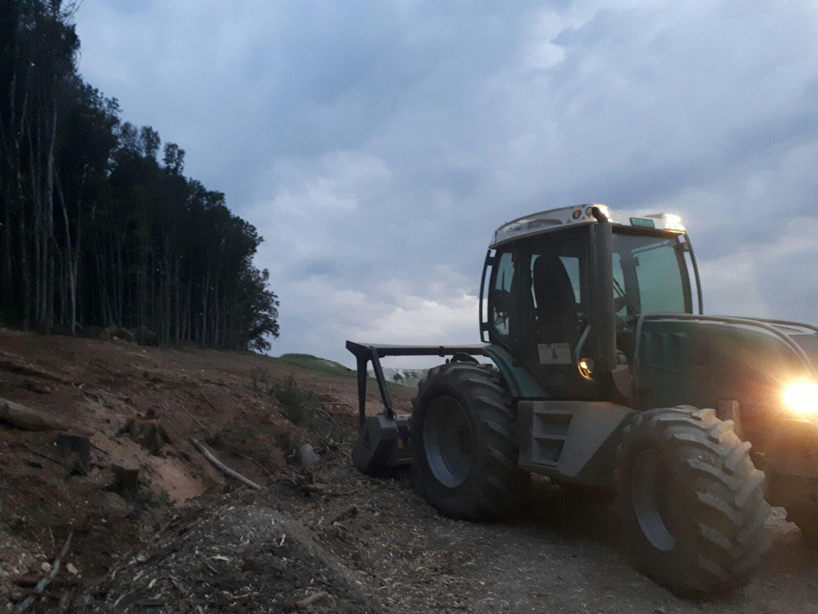 Défrichement de terrains à bâtir