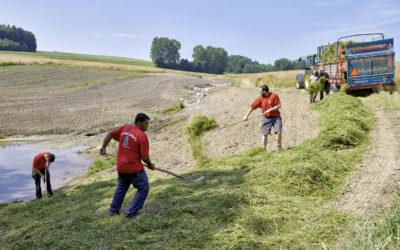 Revitalisation de cours d'eau