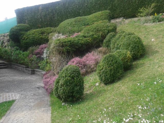 Entretien espaces verts jardin claude limat sa for Emploi entretien jardin